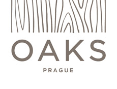 Kew Capital chystá nedaleko Prahy výstavbu nového městečka
