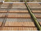 Možnosti návrhu trámečkových stropních konstrukcí