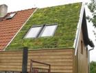 Možnosti zelených střech Isover