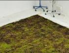 Akustika systémů lehkých požárně odolných plochých střech na trapézovém plechu