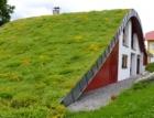 Seminář Standardy pro zelené střechy