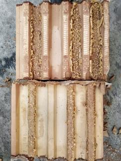 Obr. 2: Zdicí pěna Dryfix po vytvrdnutí ve styčné spáře