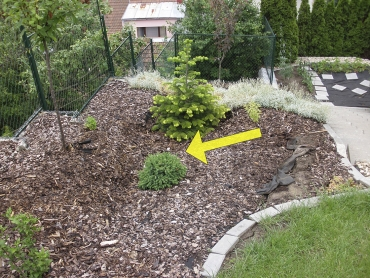 Obr. 10: Deformace (šipka) terénu za zdí, vegetace, obrubníků a schodů