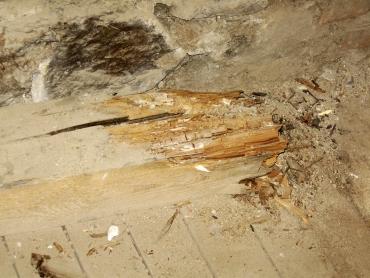 Obr. 2: Zhlaví trámu zcela zničené dřevomorkou