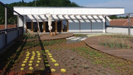 Realizace vegetační střechy na rodinném domě