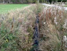 Vojenské lesy obnoví na Šumavě za 88 miliónů Želnavský smyk