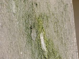 Detaily míst po odběru vzorku ke kultivaci biodeteriogenů obrusem (Ostrava, Neratovice)