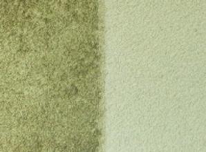 Obr. 2: Srovnávací testy systému Balclean aplikovaného na strukturovanou omítku porostlou řasami; fotokatalyticky ošetřené plochy jsou v pravých částech snímků, stav po 3–4 letech od provedení fotokatalytické povrchové úpravy