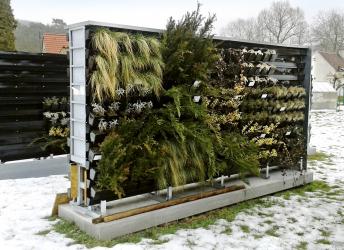 Obr. 7: Testování rostlin na zkušební stěně