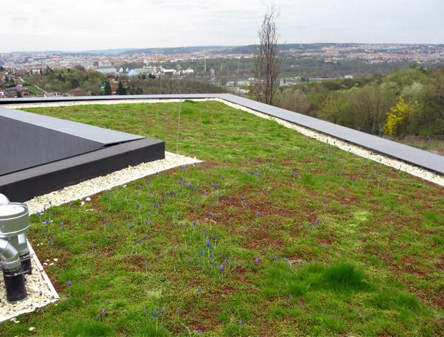 Villa Sophia s vegetační střechou ISOVER