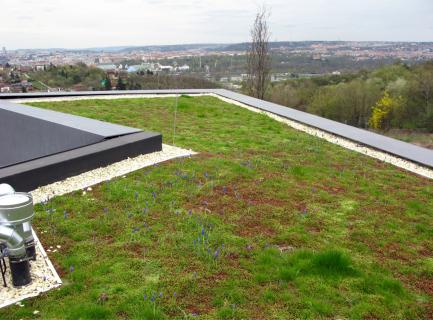 Vítězná Zelená střecha roku 2018 Villa Sophia
