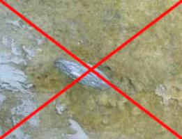 Obr. 12: Nesprávné kotvení minerální vlny malým talířkem hmoždinky, určeném pro pěnové polystyreny