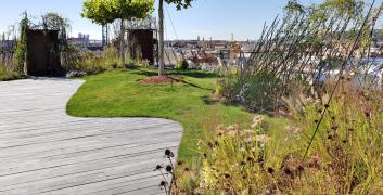 Obr. 5: Dokončená střešní zahrada