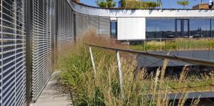 Obr. 9: Truhlíky s travinami na balkónech atria