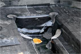 Obr. 12: Opracování izolace ve složitě tvarovaném zářezu pro odvodňovací liniový žlab