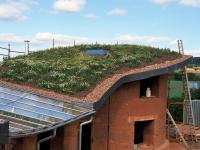 Obr. 10: Vegetační střecha