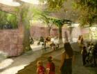 Zoo Praha zahájila stavbu nového pavilonu goril