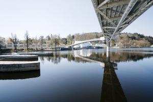 Záměrem autorů projektu bylo nezatížit konstrukcemi střed řeky a minimalizovat rozměry pylonů, proto zvolili poměrně subtilní konstrukci