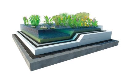 Jezírko ve střešní zahradě je vhodné  pro novostavby. Střecha s jezírkem vyžaduje pravidelnou údržbu.