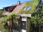 1_Vítězná vegetační střecha roku 2019