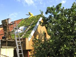 Finalizace pokládky vegetace, foto ACRE