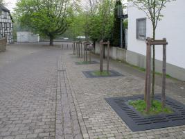 Podmínky udržení zelené infrastruktury ve městech