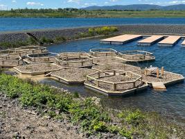 Osmiúhelníkové dřevěné konstrukce s ocelovým pláštěm a polystyrenovou výplní slouží k hnízdění vodního ptactva