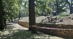 Detail oblouku a tvarování zdi vyhýbající se stromům