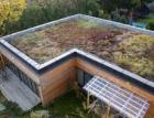 V Říčanech povinně zelené střechy. Pro nové stavby to zavádí změna územního plánu