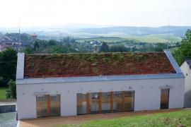 Zelená střecha na rodinném domě (zdroj: SZUZ)