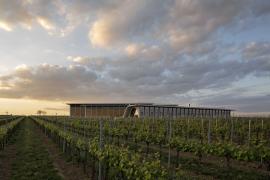 Vinařství Lahofer, založené v roce 2003, dnes s 430 hektary vinic a roční produkcí až 800 tisíc lahví, patří k největším pěstitelům vína u nás. Celý prostor se otevírá na jih do klesajícího svahu, z každého pole je výhled mezi řádky vinice