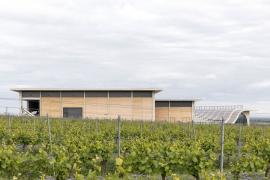 Výrobní haly: v první jsou provozy a zázemí výroby a zaměstnanců, druhá zahrnuje provozy s požadavkem na nižší teplotu – lisovnu, sklep a sklady lahvovaného vína