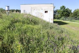 Střecha technického objektu je využita pro zvýšení biodiverzity velkoměsta.