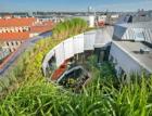 Zelené střechy od projektu k realizaci