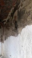Obr. 4a: odsolování zdiva paláce buničinou, r. 2019 (Foto M. Karlík)