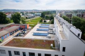 Inovační centrum Svatopetrská v Brně, zelená střecha (foto: Vojta Herout)