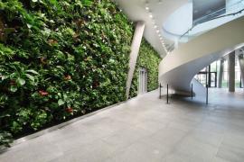Vertikální zahrada - Kooperativa (zdroj: Němec)