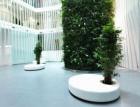 Zelená zeleným městům s pomocí kaskádových zahrad
