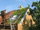 Fenomén zelených střech: Přírodě vrátíme dluh a ještě si zajistíme komfortní bydlení