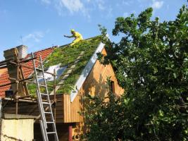 Finalizace pokládky vegetace (zdroj: ACRE)
