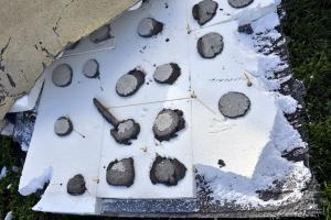 Obr. 5: Část ETICS strženého větrem v Brně. Plastové kotvy jsou umístěny mimo nahodile rozmístěné lepicí body. Podobný stav byl zjištěn na zbytcích strženého zateplení na několika dalších stavbách poškozených větrem