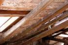 Niektoré skúsenosti zrealizácií drevených konštrukčných sústav