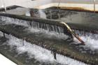 Půlmiliardovou zakázku na obnovu úpravny vody Mostiště má firma SMP CZ