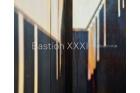 Kniha Bastion XXXI – U Božích muk