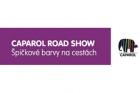 Caparol Road Show 2013